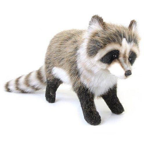 Raccoon No5238 Stuffed Doll Japan Plush Toy Japanese Kids Gift