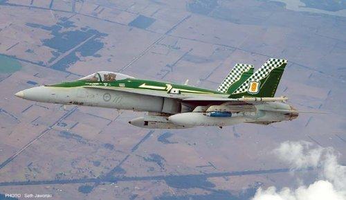 Hasegawa 07361 1 48 F A-18A Hornet RAAF 70 Anniversary Limited plamo Japan Toy